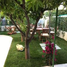 giardino-bnb-vieste-foggia-gargano-puglia-italia16