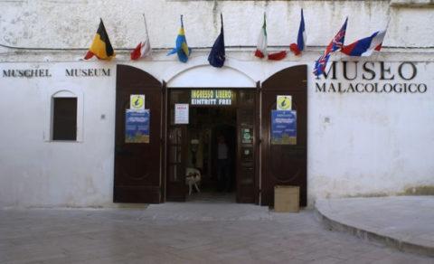 visitare museo malacologico vieste gargano